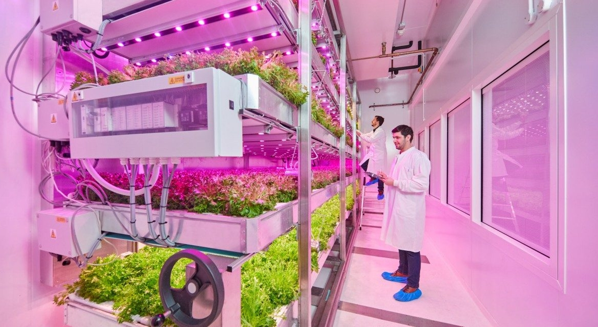 Optimising the Modern Farm with LEDs at Philips GrowWise