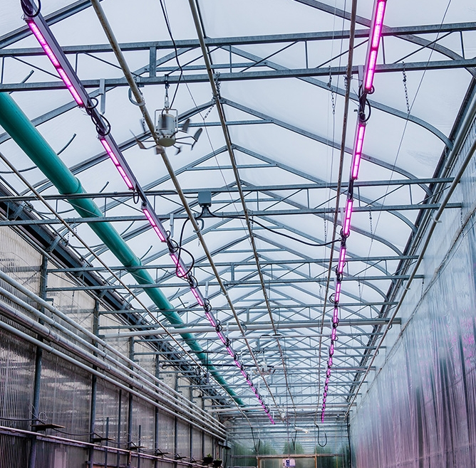 Signify Philips GreenPower LED Lighting Powers Cannabis Biotech Complex