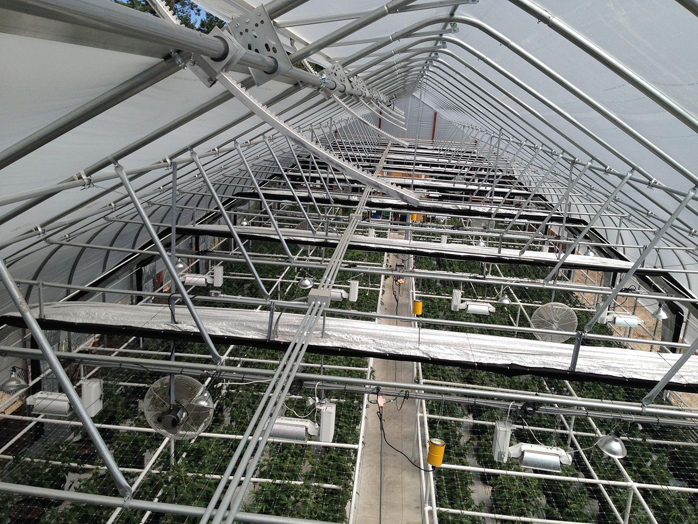 Shade Cloth Overview in Greenhouse