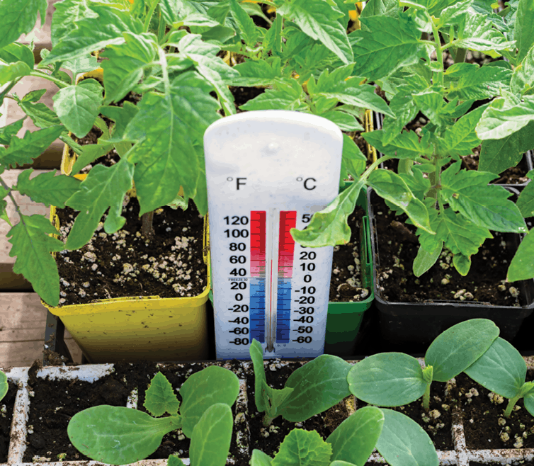 5 tips for temperature control in your growing environment