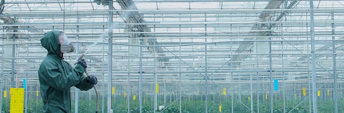 Thoroughly and Safely Cleaning A Greenhouse with GS-4