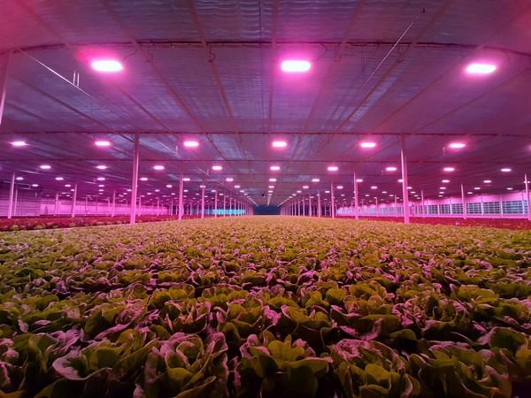 Philips LED Toplighting Installation in Switzerland