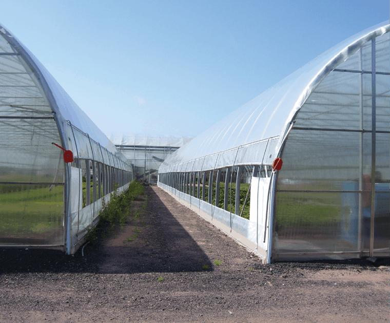 Improve Roll-Up Sidewall Ventilation