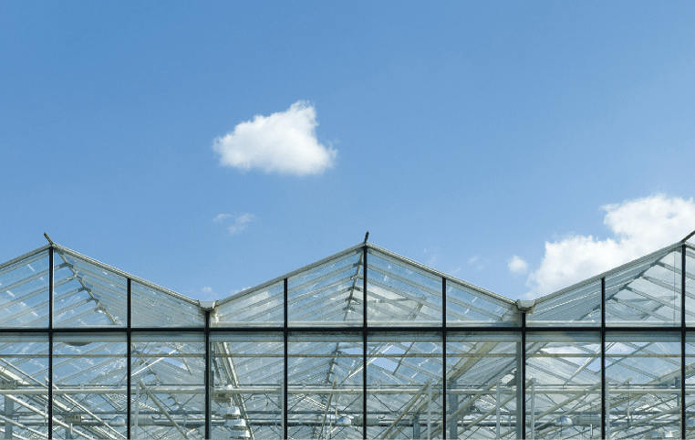 24 Tips to Improve Greenhouse Efficiency